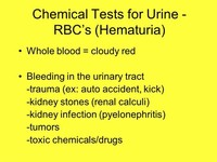Blood in the Urine (Hematuria)