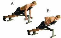 Dumbbell Chest-Supported Row