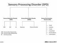 Pattern 1: Sensory Modulation Disorder