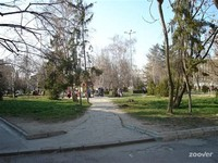 Central Park Yambol