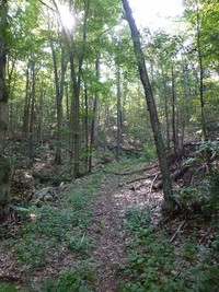 Wooster Mountain State Park