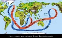 Deep Water Currents--Thermohaline Circulation
