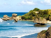 Bathsheba, ​Barbados​