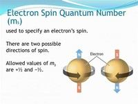 The Electron Spin Quantum Number (\(m_s\))