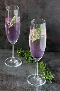 Champagne ​Cocktail​