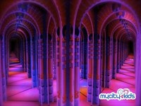 Wakkao- 5d Theatre, Mirror Maze And Spinning Tunnel