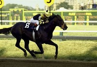 Seattle Slew​