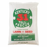 Kentucky 31 Tall Fescue 50lbs Grass Seed