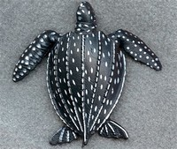 Leatherback ​sea Turtle​