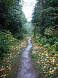 North Chuckanut Mountain Trailhead