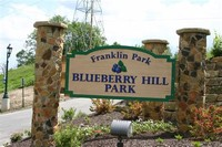 Blueberry Hill Local Park