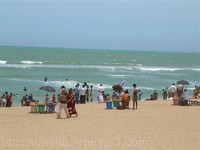 Tuticorin Roach Beach,