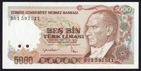 Turkish Lira​