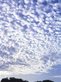 Mid-Level Clouds Include Altocumulus and Altostratus