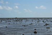 Marine ​National Park, Gulf of Kutch​