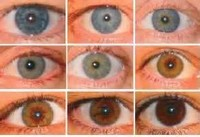 Spectrum of eye Color