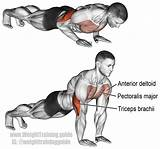 Pushups Muscle Targeted: Chest