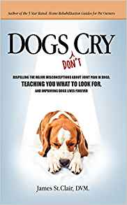 Dogs Don't Cry: Dispelling The Major Misconceptions About ...