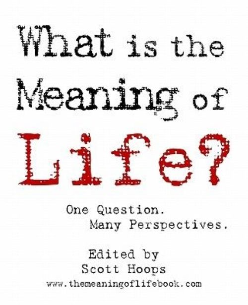NEW What Is the Meaning of Life?: One Question. Many ...