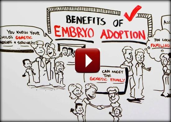 Adoption Qa