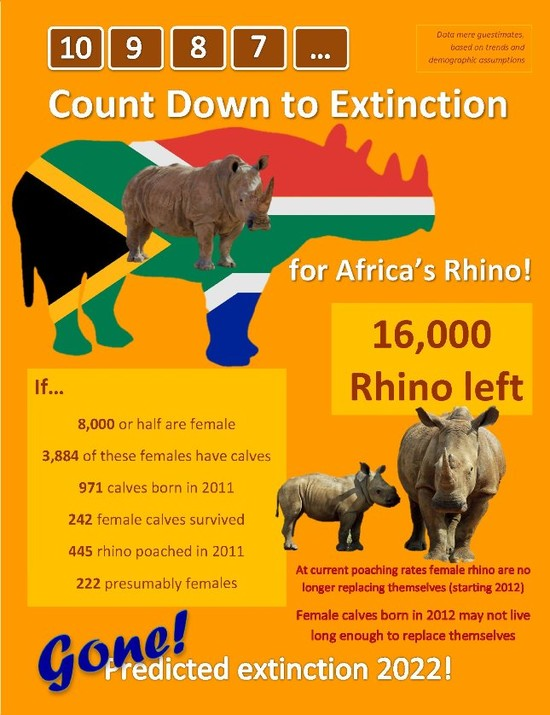 How Long Till South Africa's Rhino Are Extinct?