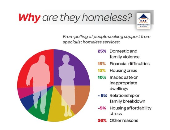 This image outlines some of the causes of homelessness in ...