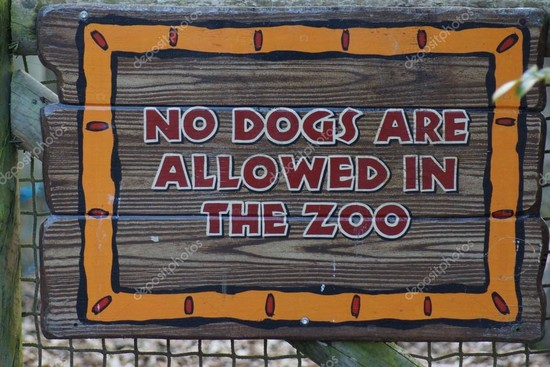 No Dogs Allowed in the Zoo — Stock Photo © poeticpenguin ...