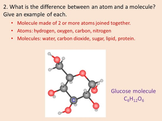 1. What is the difference between an element and a ...