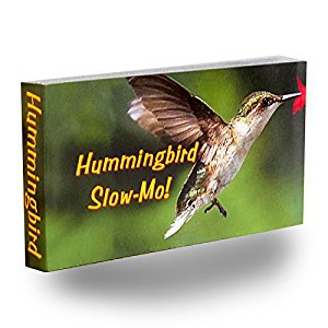Amazon.com: Fliptomania Hummingbird Flipbook: Inc ...