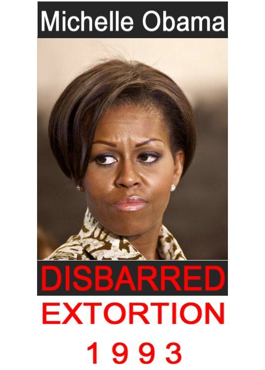 Michelle Obama's law license was put into a 'court-ordered ...