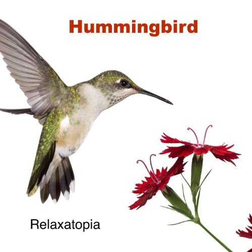 Hummingbird by Relaxatopia on Amazon Music - Amazon.com